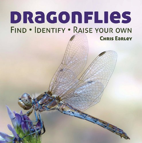 9781770851856: Dragonflies: Hunting - Identifying - How and Where They Live
