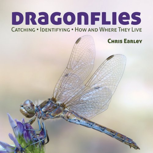 9781770851863: Dragonflies: Hunting - Identifying - How and Where They Live