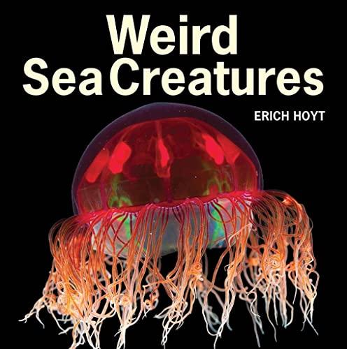 9781770851979: Weird Sea Creatures