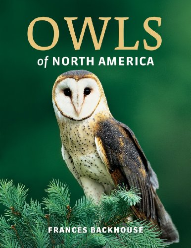 9781770852327: Owls of North America