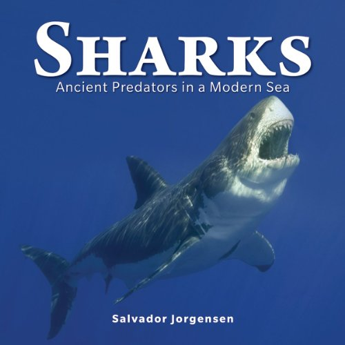 Sharks: Ancient Predators in a Modern Sea: Jorgensen, Salvador