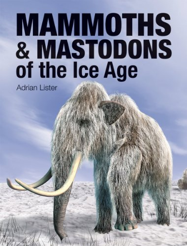 9781770853157: Mammoths and Mastodons of the Ice Age