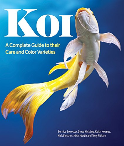 Koi: A Complete Guide to their Care: Brewster, Bernice; Fletcher,