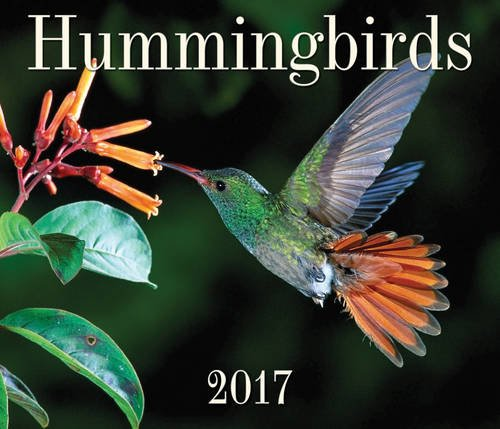 9781770856745: Hummingbirds 2017 (Calendars 2017)