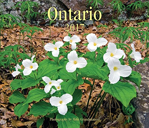 9781770856752: Ontario 2017