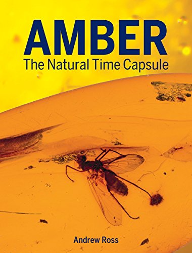 9781770857599: Amber: The Natural Time Capsule