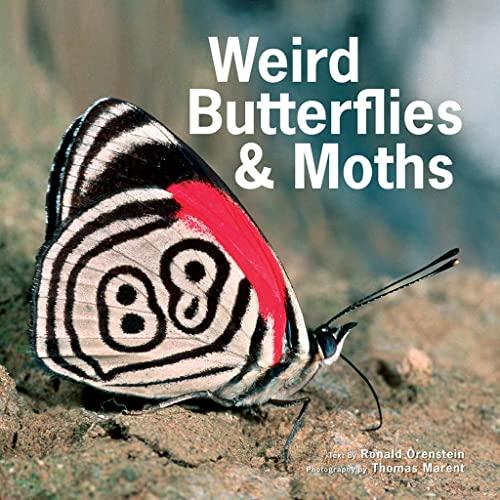 Weird Butterflies and Moths: Orenstein, Ronald