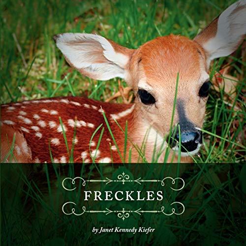 9781770972636: Freckles