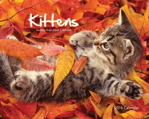 9781770985971: Kittens 2016 Double-View Easel Wyman