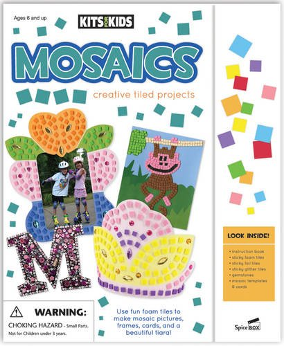 9781771320528: Mosaics: Creative Tiled Projects