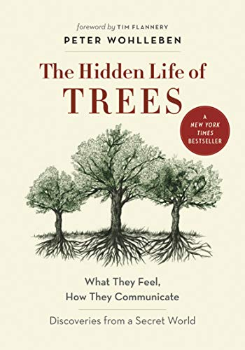 9781771642484: The Hidden Life of Trees: What They Feel, How They Communicate―Discoveries from A Secret World (The Mysteries of Nature, 1)