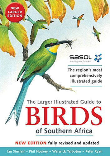 9781775840992: Sasol's Larger Illustrated Guide to Birds of Southern Africa