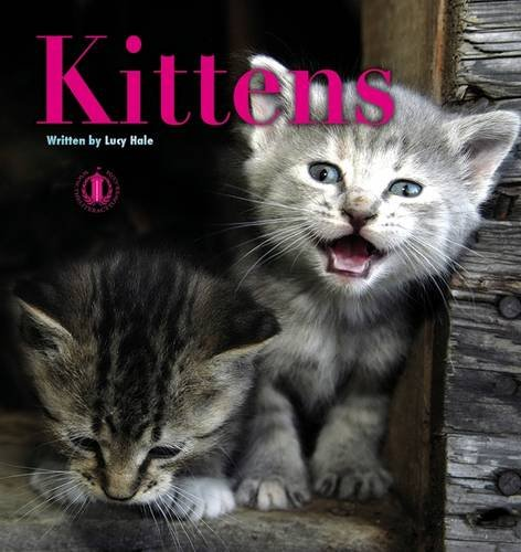 9781776500116: Kittens (The Literacy Tower)