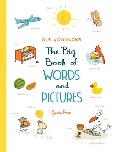 9781776571352: The Big Book of Words and Pictures