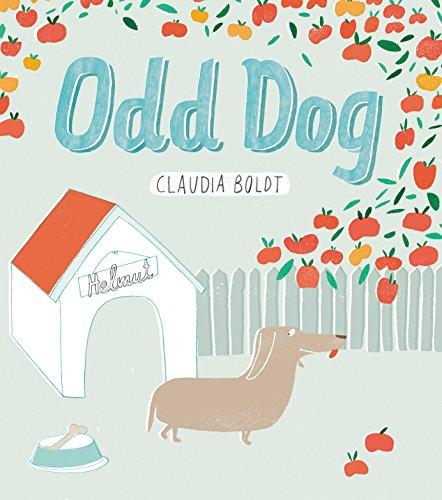 9781780080055: Odd Dog