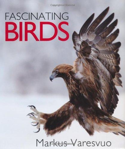 Fascinating Birds: Varesvuo, Markus