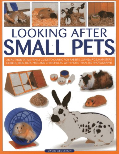 Looking After Small Pets: An authoritative family guide to caring for rabbits, guinea pigs, ...