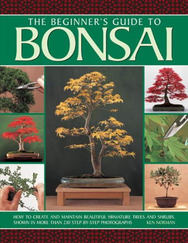 9781780193069: The Beginner's Guide to Bonsai: How To Create And Maintain Beautiful Miniature Trees And Shrubs, Shown In More Than 230 Step-By-Step Photographs