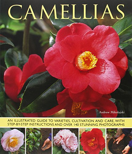 Camellias (Paperback)