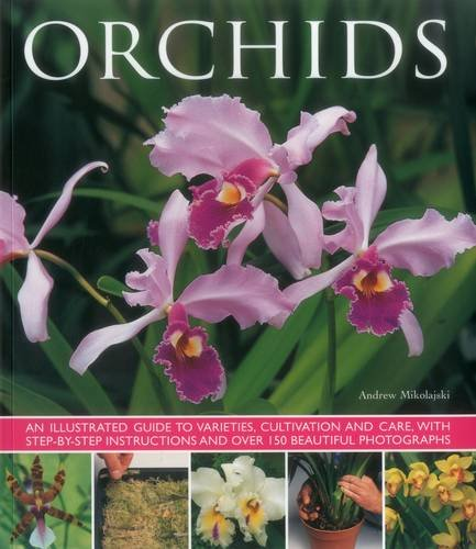 9781780193670: Orchids