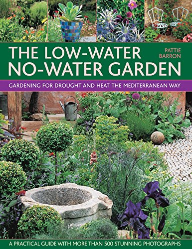 9781780194219: Low-Water No-Water Garden
