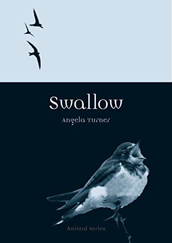 9781780234915: Swallow (Reaktion Books - Animal)