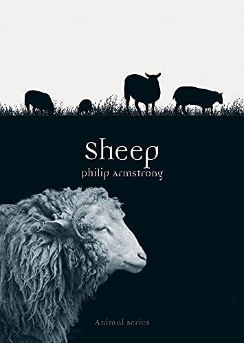 9781780235936: Sheep (Animal)