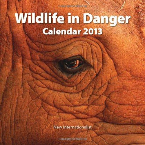 9781780260679: 2013 Wildlife in Danger Calendar