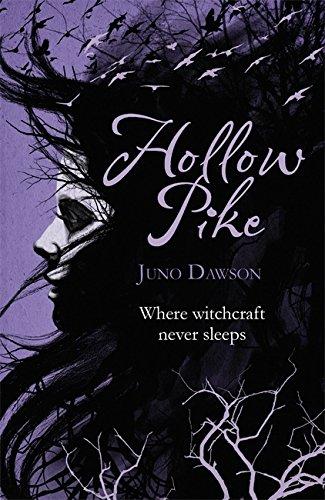 9781780620039: Hollow Pike
