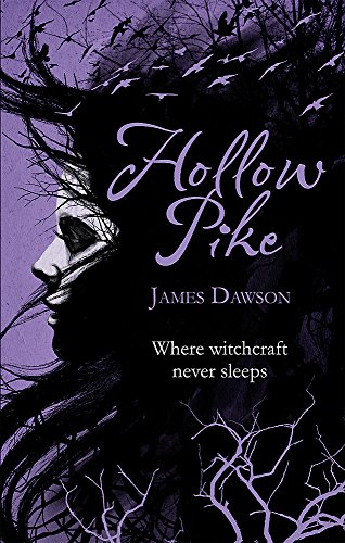 9781780620046: Hollow Pike