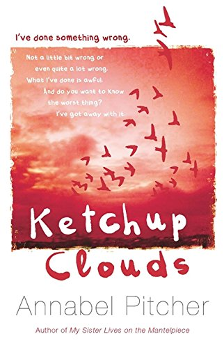 9781780620305: Ketchup Clouds
