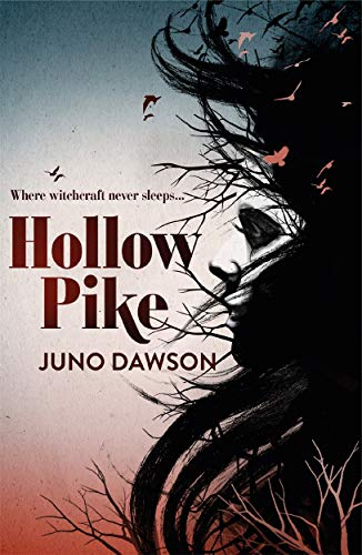 9781780621289: Hollow Pike