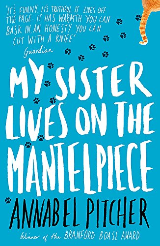 9781780621869: My Sister Lives on the Mantelpiece