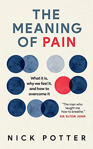 9781780723907: The Meaning of Pain: What it is, why we feel it, and how to overcome it: A radical new approach to overcoming chronic pain