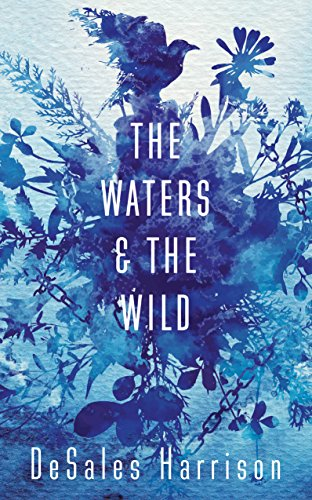9781780749112: The Waters and the Wild