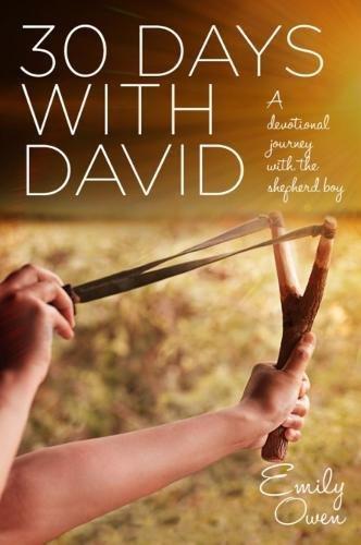 9781780784496: 30 Days with David