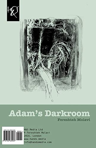 9781780835563: Adam's Darkroom: Tarikkhaneh-ye Adam (Persian Edition)