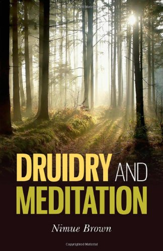 9781780990286: Druidry and Meditation