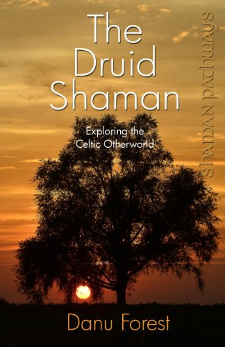 9781780996158: Shaman Pathways - The Druid Shaman: Exploring the Celtic Otherworld