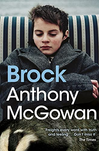 9781781122082: Brock