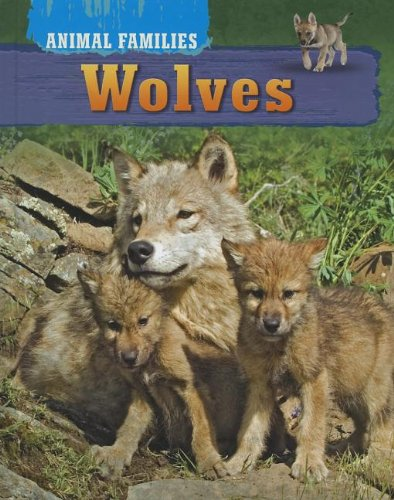 9781781210062: Wolves (Animal Families (Brown Bear Books))
