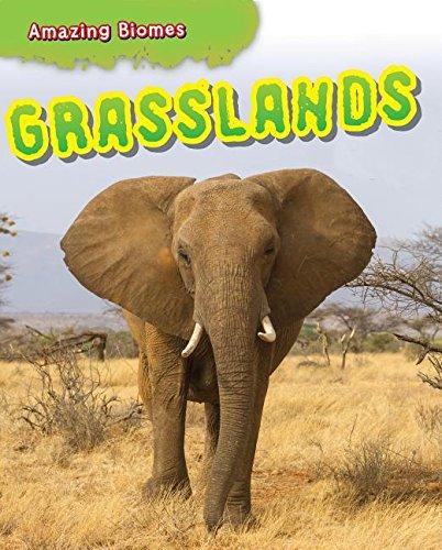 Grasslands (Amazing Biomes): Leon Gray