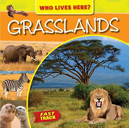 Grasslands: M J Knight