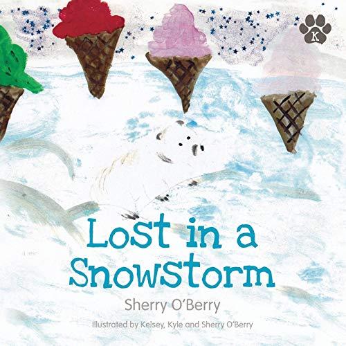 9781781321805: Lost in a Snowstorm (Kyle Polar Bear Books)
