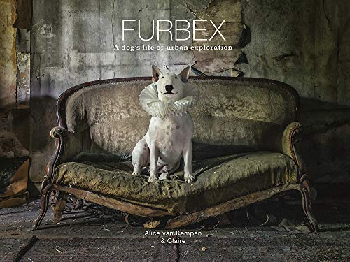 9781781453322: Furbex