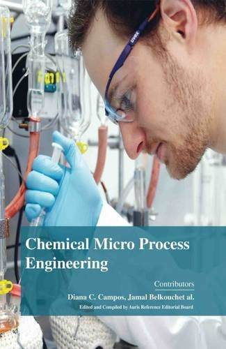 9781781545287: Chemical Micro Process Engineering