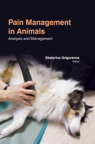 Pain Management In Animals : Analysis And Management