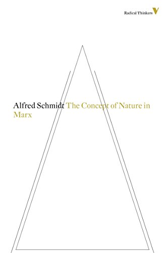9781781681473: The Concept of Nature in Marx (Radical Thinkers)