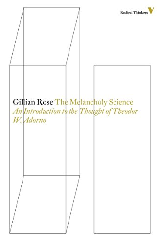 9781781681527: melancholy science (Radical Thinkers)