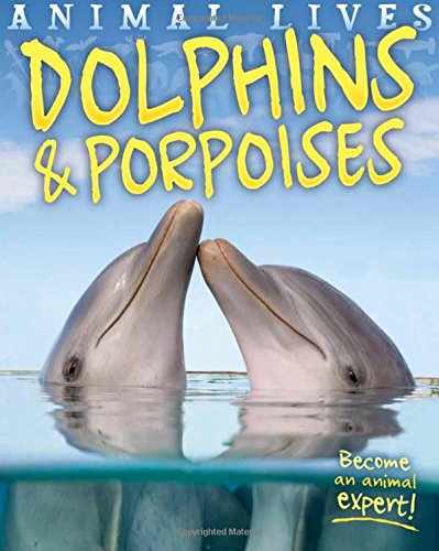 Animal Lives: Dolphins and Porpoises: Morgan, Sally